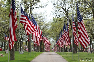 Avenue of Flags in Detroit Lakes (2)