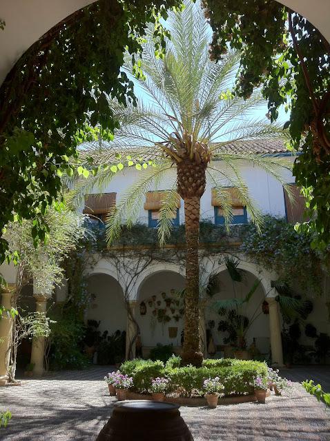 ogród na wewnętrznym dziedzińcu (Kordoba, Hiszpania)