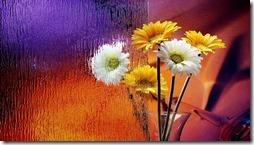margaritas flores (36)