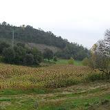 Refugi de Bellmunt 2005 - CIMG4671.JPG