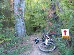 afterwards I found a kick ass bike trail to ride