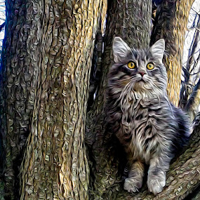 Majestic Kitty by Deborah Murray - Animals - Cats Portraits ( cat, tree, digital art, posing, animal, oil,  )