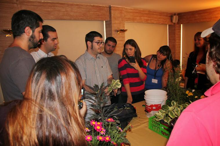 Curso de jardines verticales, gestión de la plantación