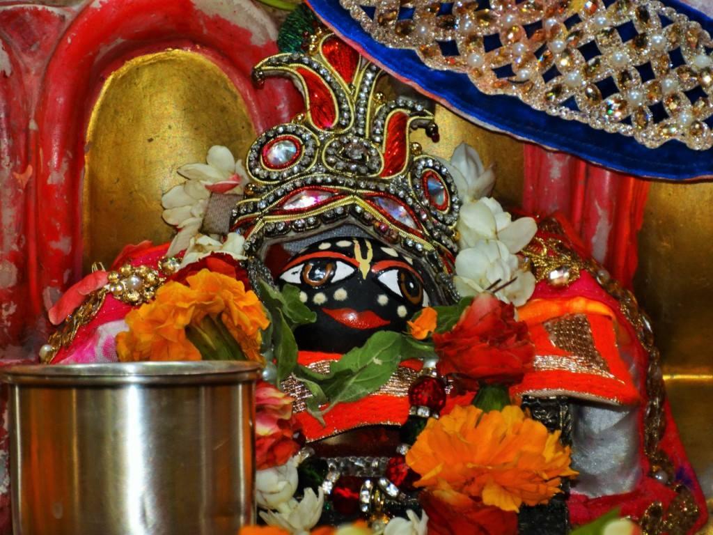 ISKCON Punjabi Bagh Deity Darshan 08 April 2016 (5)