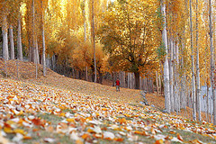 Autumn is cool and romantic in Pakistan