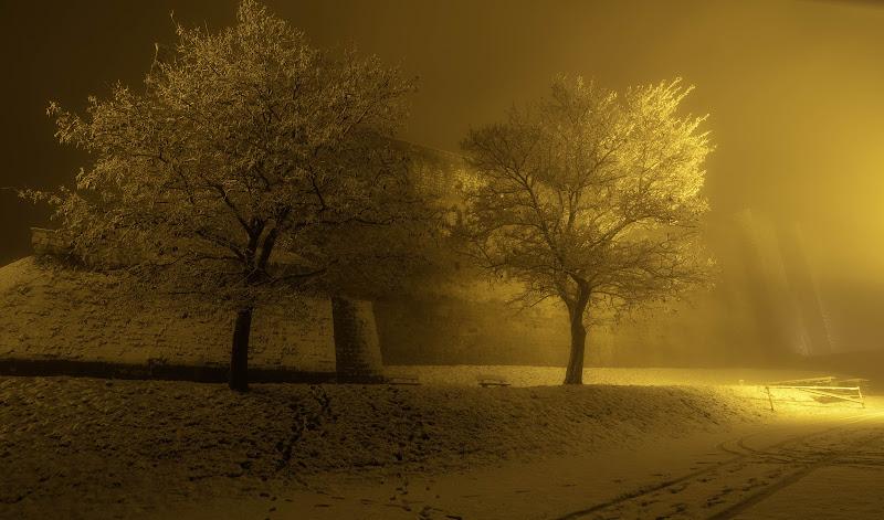 Maniero medievale avvolto da gelo e nebbia di Claudio Margiotta