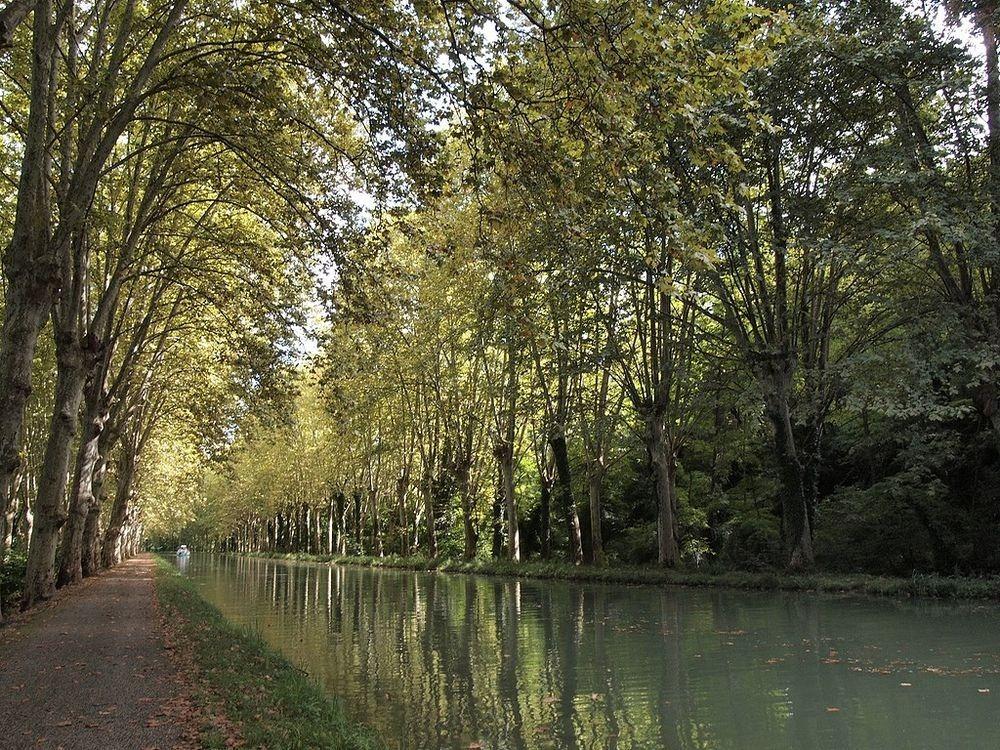 canal-du-midi-5