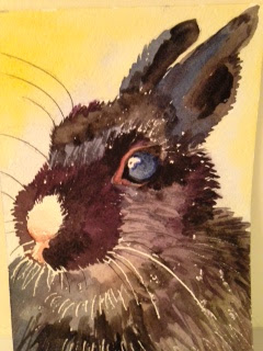 Black Bunny Portrait