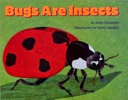 Bugs Are Insects
