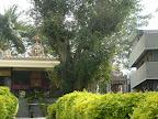 Sri Ramanjaneya Swamy, Sri Shaneshwara Swamy, Sri Subramanya Swamy Temple, 30th cross, Banashankari 2nd Stage