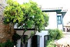Фото 2 Turk Evi Hotel