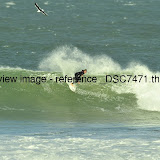_DSC7471.thumb.jpg