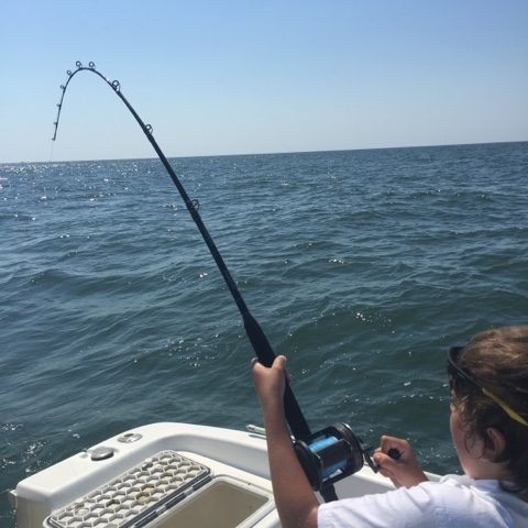shark fishing charleston sc