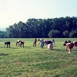 sevenoaks exercises.jpg