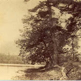HISTORIC PHOTOS - e50019b.jpg