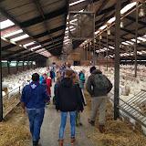Bevers & Welpen - Boerderij bezoek - 2014-03-22%2B10.31.14.jpg