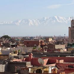 Maison de la Photographie de Marrakech's profile photo