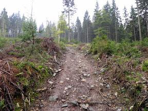 Szlak na Rudawiec