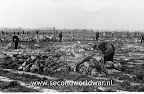 Operation Manna, April 1945 Rotterdam www.secondworldwar.nl Photo Courtesy Jan Wullink