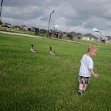 Easter Egg Hunt - 116_1405.JPG