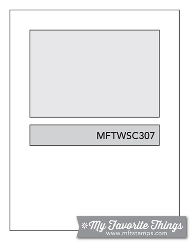 MFT_WSC_307