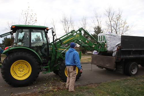 Hammo Fall Planting - Jim Murtagh - BC3G2536.jpg