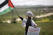 Palestine Lebih Butuh Bantuan Militer Daripada Yang Lainnya