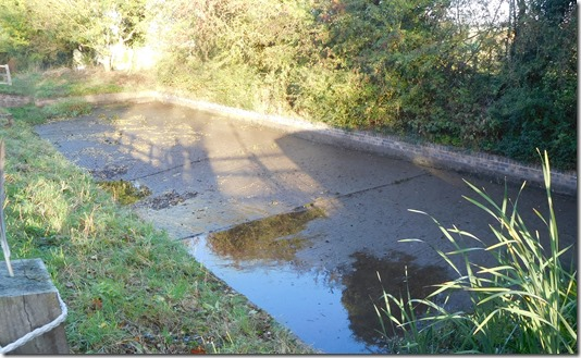 4 empty side pond
