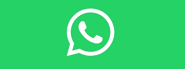 Whatsapp Will Soon Be Able To Send Any Type Of File 1