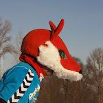 18.02.12 41. Tartu Maraton TILLUsõit ja MINImaraton - AS18VEB12TM_023S.JPG