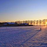Winter - Winter-001.jpg