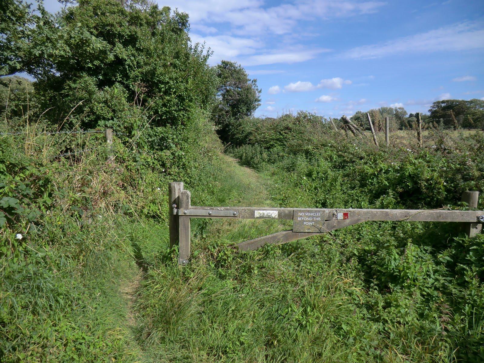 CIMG4447 Green lane to Lower Pennington