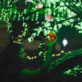 The Tree of Light by Deepteesh Dey - People Street & Candids