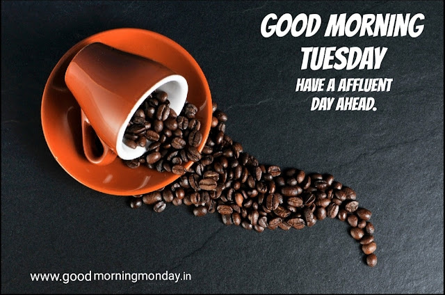 [ Good Morning Tuesday ] wishes and Greetings images for family and friends