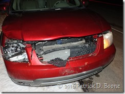 Deer Collision 1-26-2016