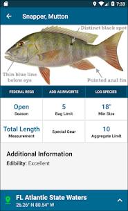Fish Rules 3