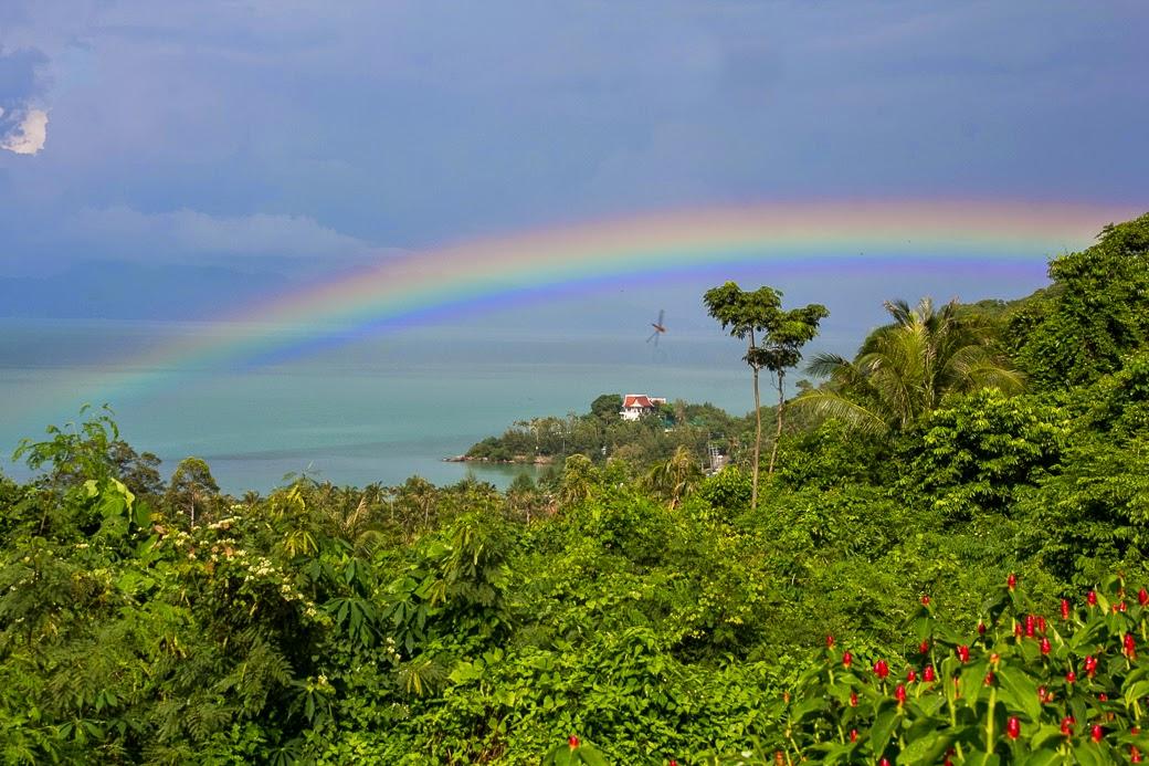 Rainbow%252520-9729.jpg