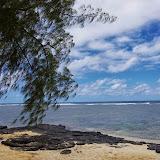 06-25-13 Annini Reef and Kauai North Shore - IMGP9326.JPG