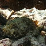 Bonaire 2011 - PICT0150.JPG