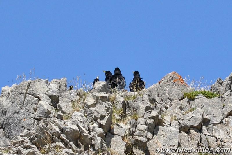 Mesa de los Tres Reyes desde Linza
