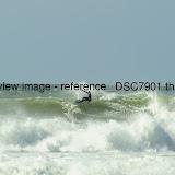 _DSC7901.thumb.jpg