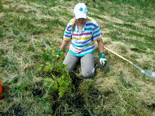 BaumbepflanzungImTherapiegarten_12-06-2014.31