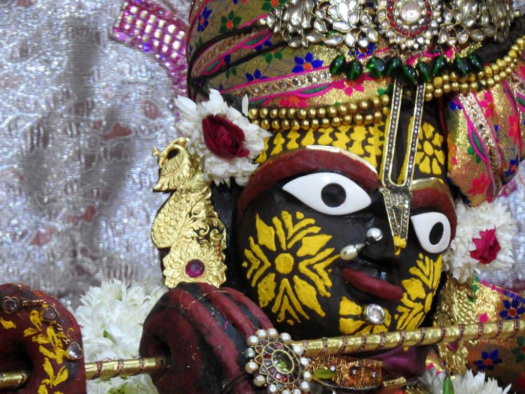 Radha Govind Devji Deity Darshan 10 Jan 2017 (9)