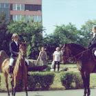 Diákjuniális - 2000