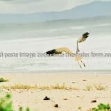 20140824-_PVJ1766.jpg