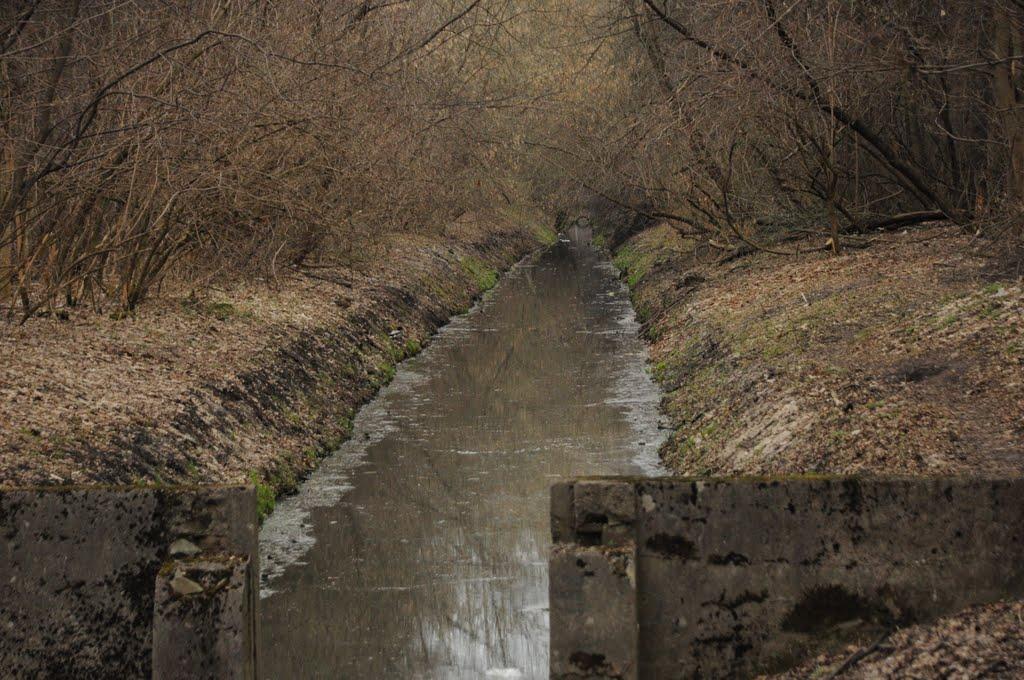 Rezerwat Olszynka Grochowska