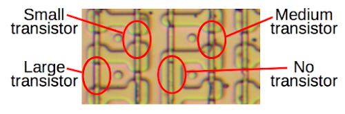 A closeup of the 8087's microcode ROM shows four different transistor sizes. This allows the ROM to store two bits per cell.