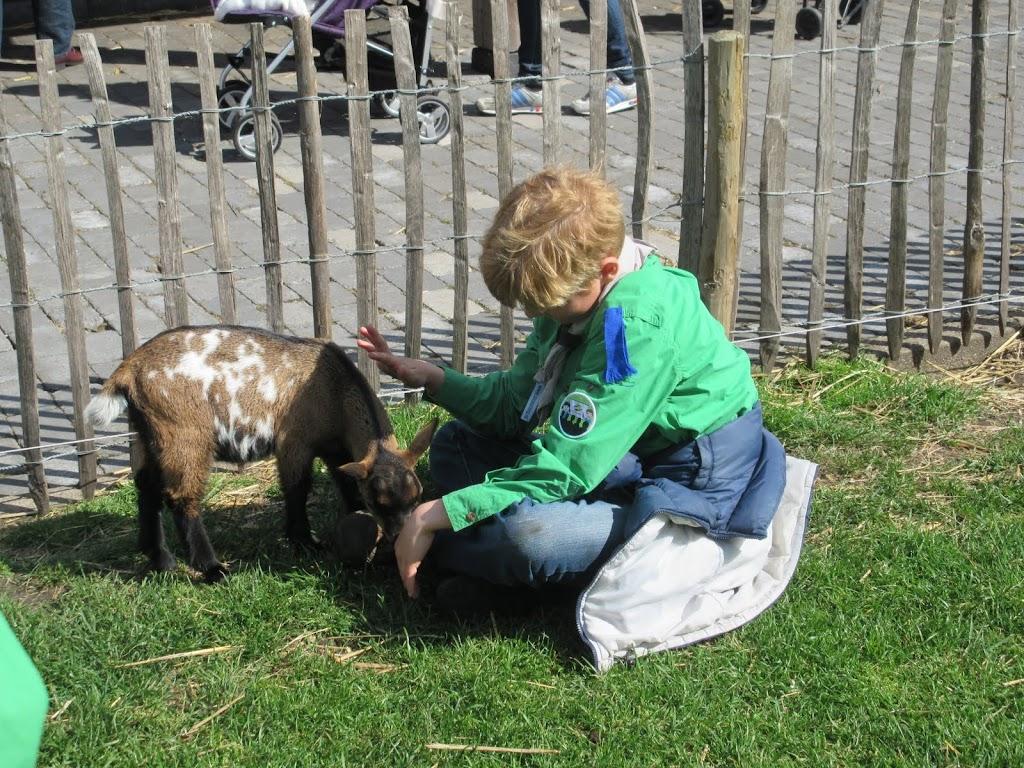 Welpen - Kinderboerderij & Crossbaan - IMG_2481.JPG