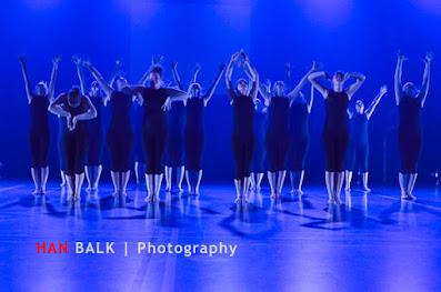 Han Balk Voorster Dansdag 2016-4003-2.jpg