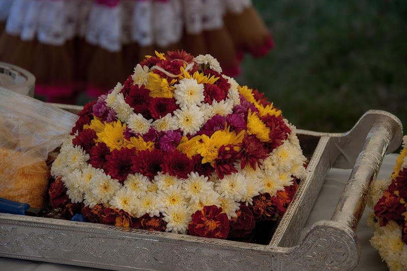 TeNA Boston Bathukamma 2015 Celebrations - 11.jpg
